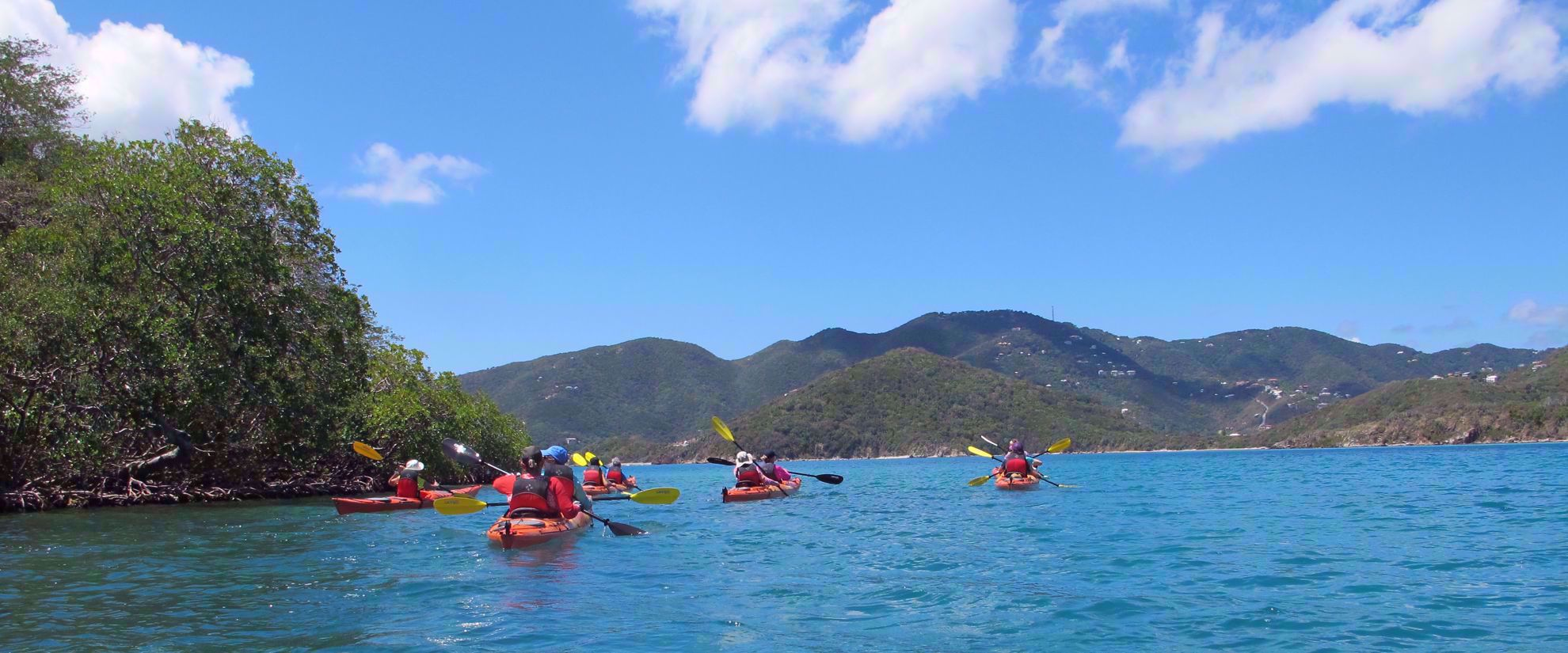 Female travel group kayaking through caribbean