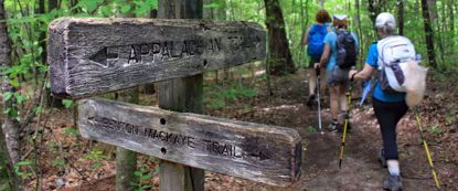 Picture of The Art of Mountain Hiking - the Appalachians