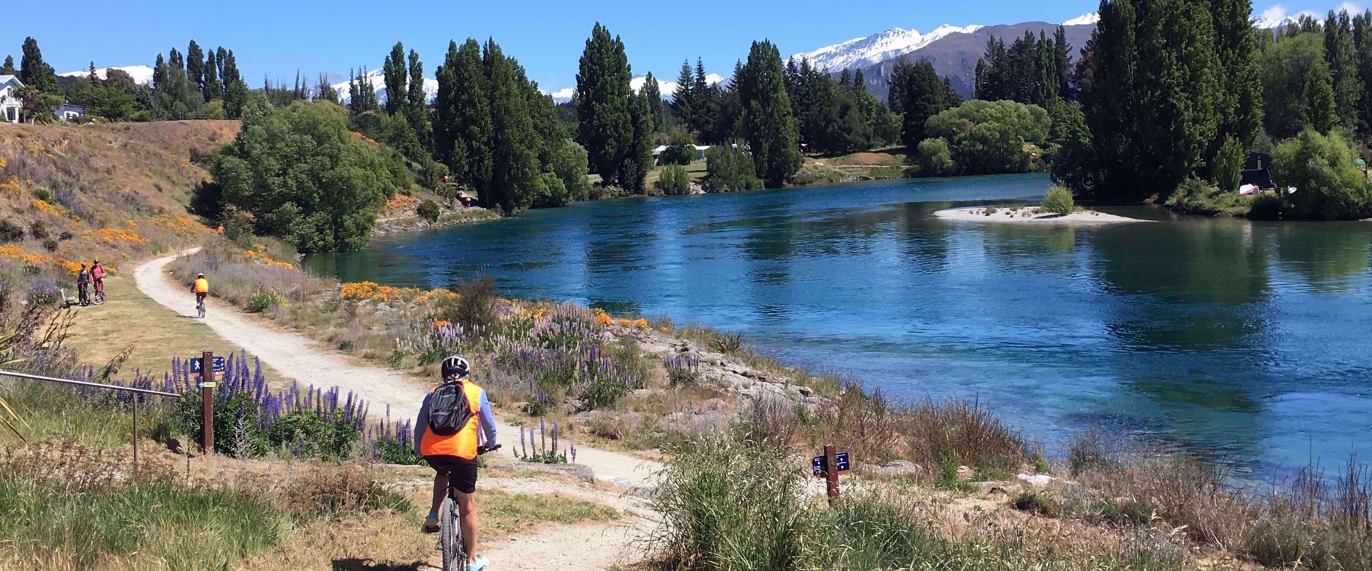 cycling trail by river in new zealand
