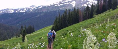women hike on trail through colorado rockies with wildflowers pine trees and mountains