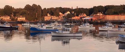 boats in harbor during sunset maine