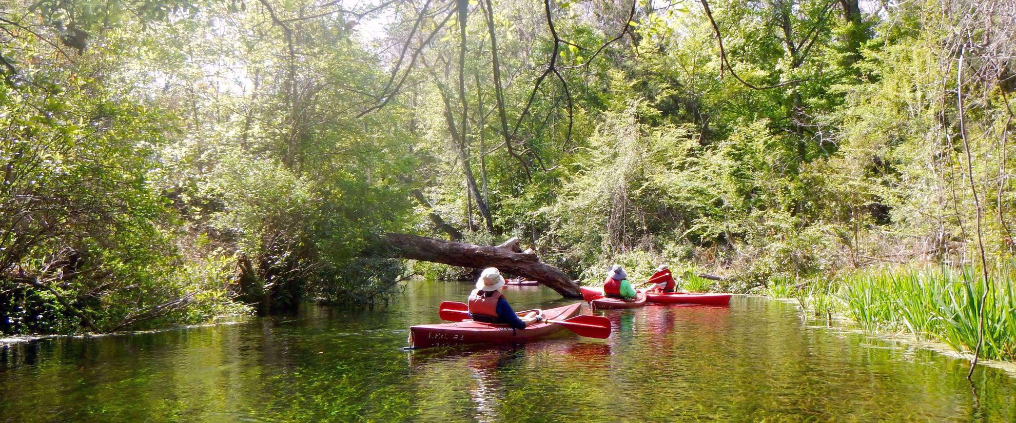 women's travel group kayaking suwannee river