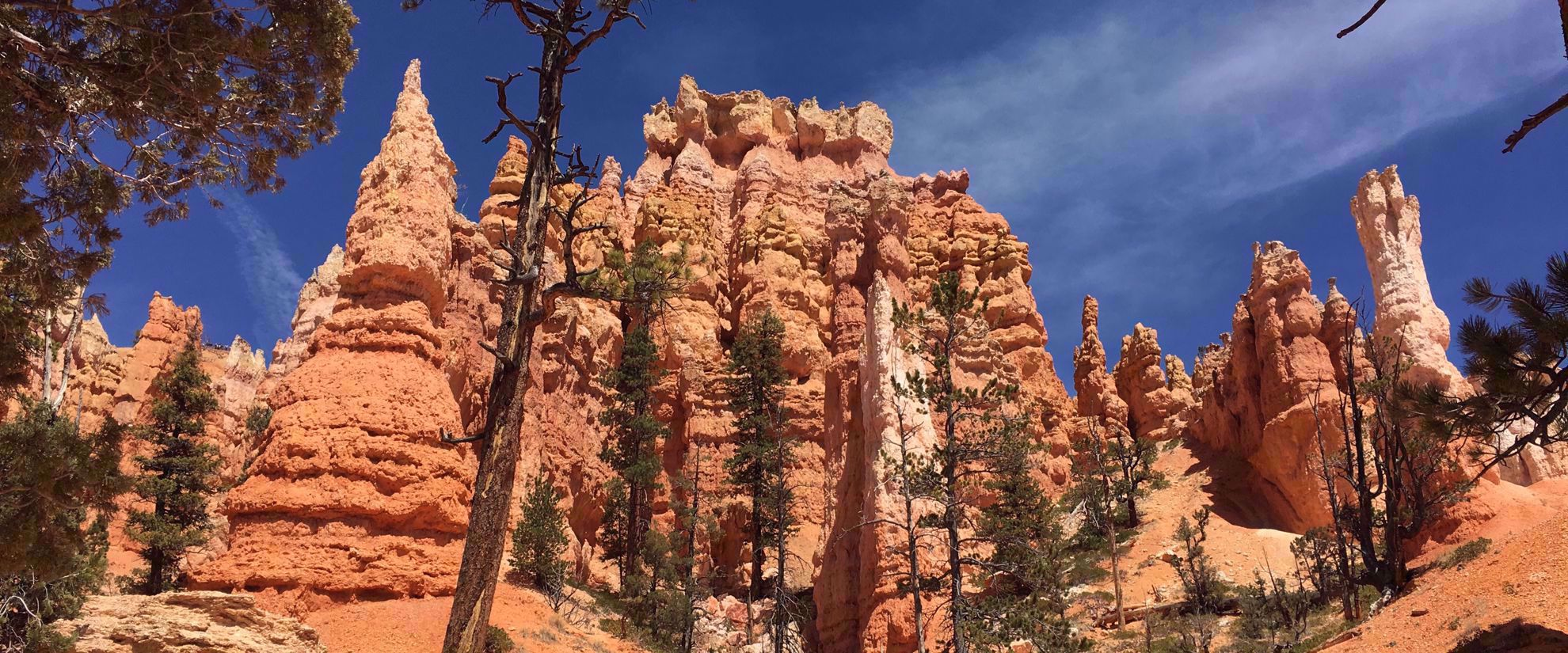 red rock formations in utah national park