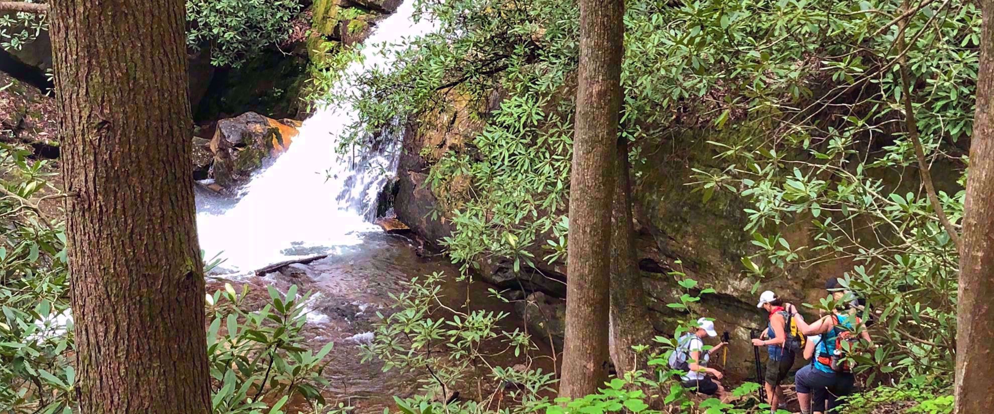 women hiking down to waterfall surrounded by greenery