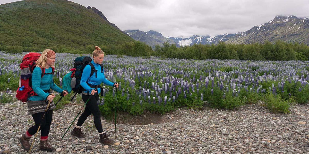 Trekking poles for hiking trips: the 4 most common questions