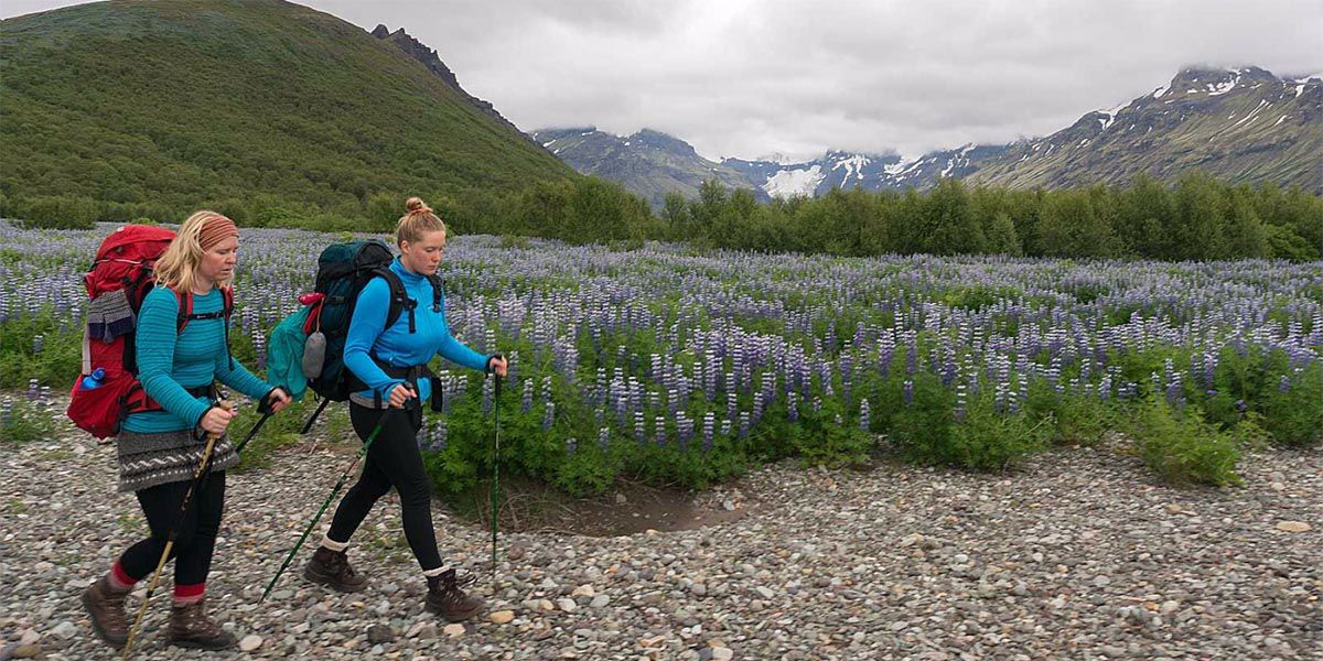 How to Train for Your Next Hiking Trip