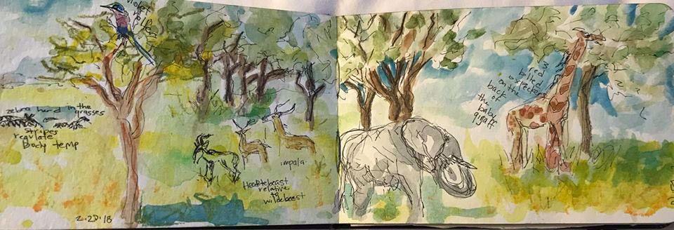 Through a Guide's Eyes: Sketching in Tanzania with Brenda Porter