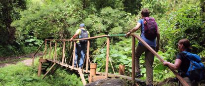 women crossing bridge Hiking in the rain forest